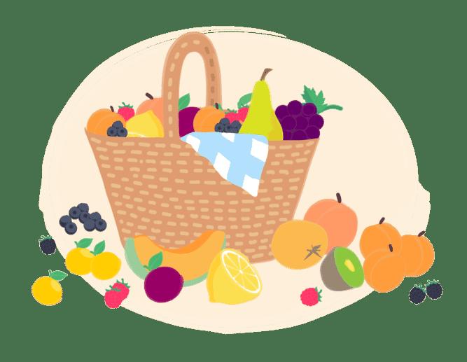 bionus Panier de fruits bio de saison